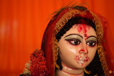 India: Durga Puja 2009