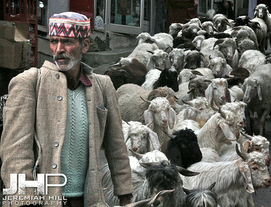 """Shepherd"", Dharamsala, Himichal Pradesh, India, 2006 Print IS2406-742V2"