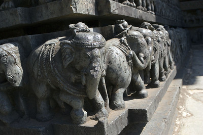 A parade of elephants encircling the entire temple. Hundreds of them.