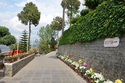 Timber Trail - Parwanoo, Himachal Pradesh