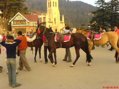 The Mall of Shimla