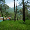 The lush scenery of the Himalayan foothills