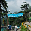 Heading to Shimla's train station