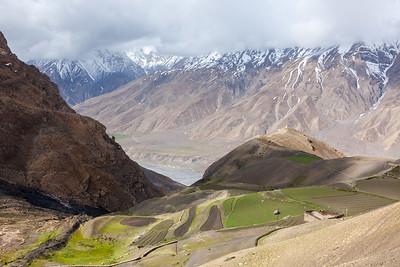 Fields in Spiti Valley