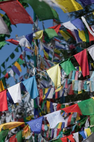 Buddhist prayer flags on kora around Tsuglagkhang complex. McLeod Ganj, Himachal Pradesh, India