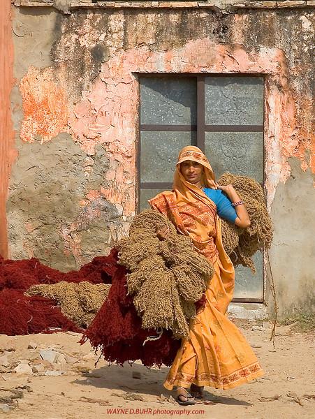 Jaipur,India