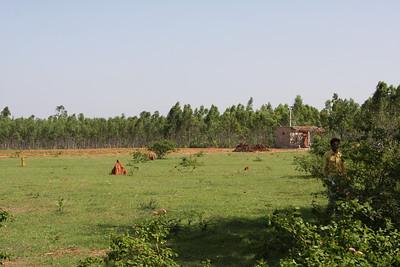 2010-05-27_347