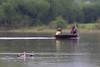 Indian Spot-billed Ducks & fishermen<br /> Kabini River, Karnataka, India