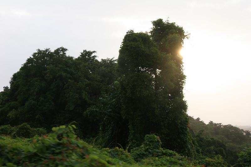 2007-07-12_068