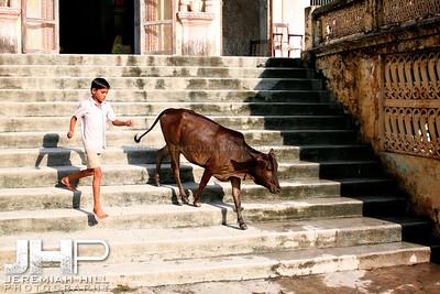 """The Chase Part 2"", Rishikesh, Uttaranchal, India, 2007 Print IND3714-198"