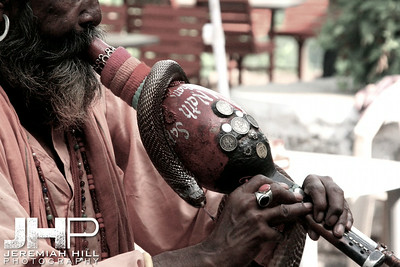 """Snake Charmer #1"", Rishikesh, Uttaranchal, India, 2007 Print IND371-068"