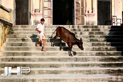 """The Chase Part 1"", Rishikesh, Uttaranchal, India, 2007 Print IND3714-197"