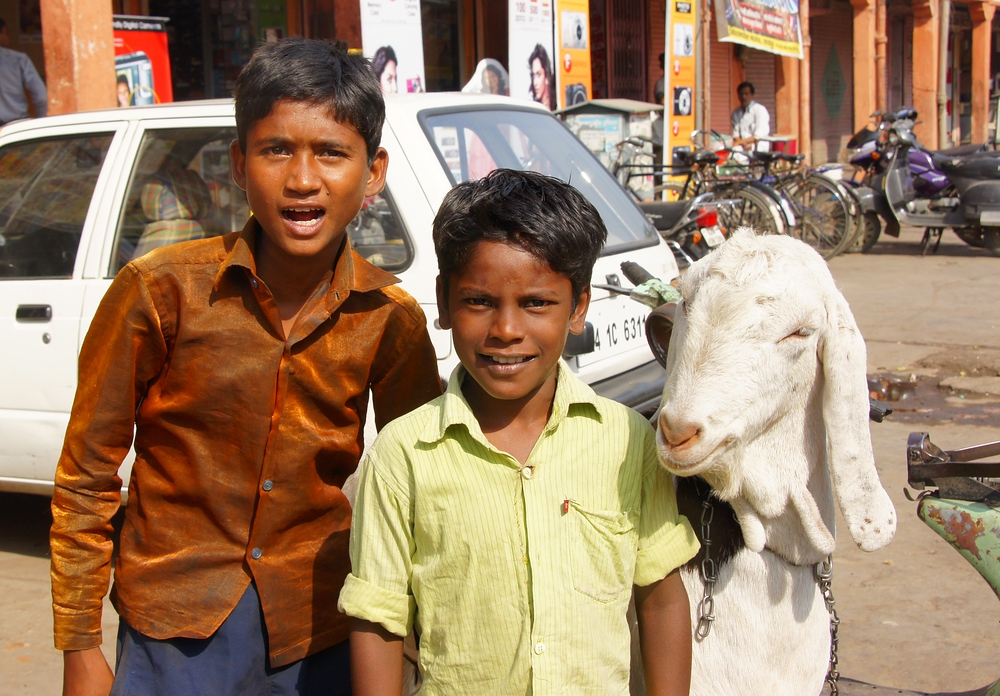 Two Indian boys pose with their goat on the bustling streets of Jaipur, India.