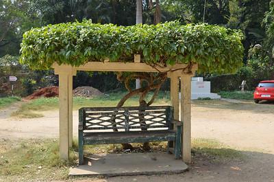 Brindavan Gardens - Krishnarajendra Terrace Garden, Mysore