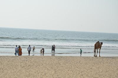 Payyambalam Beach, Kannur, Kerala