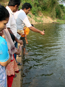 Meenoot - A very rare Ritual of Feeding Fishes