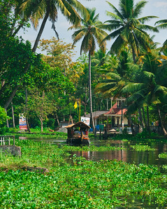 Backwater houseboat tour in Alleppey, Kerala, India