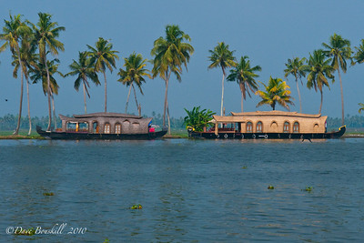 Houseboats on the Alleppey backwaters in Kerala, India