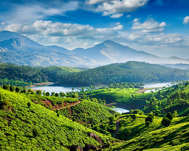 Tea plantations and river in hills near Munnar, Kerala, India