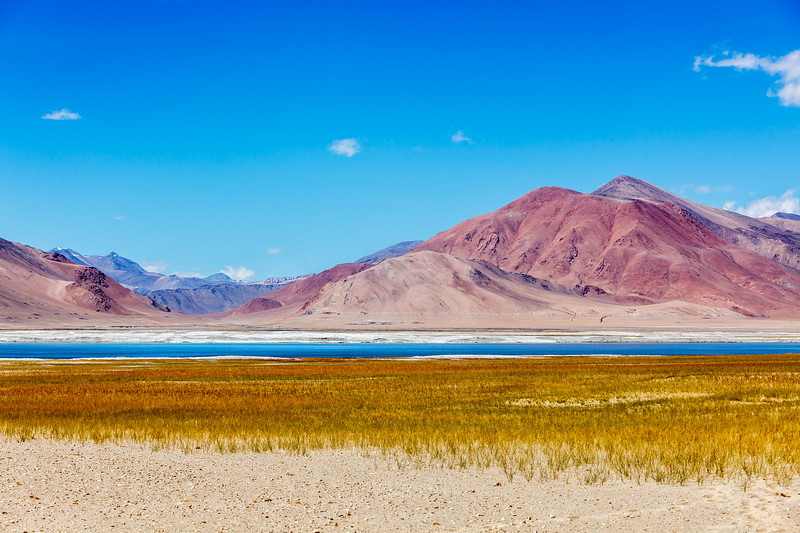 Salt lake Tso Kar in Himalayas, Ladakh
