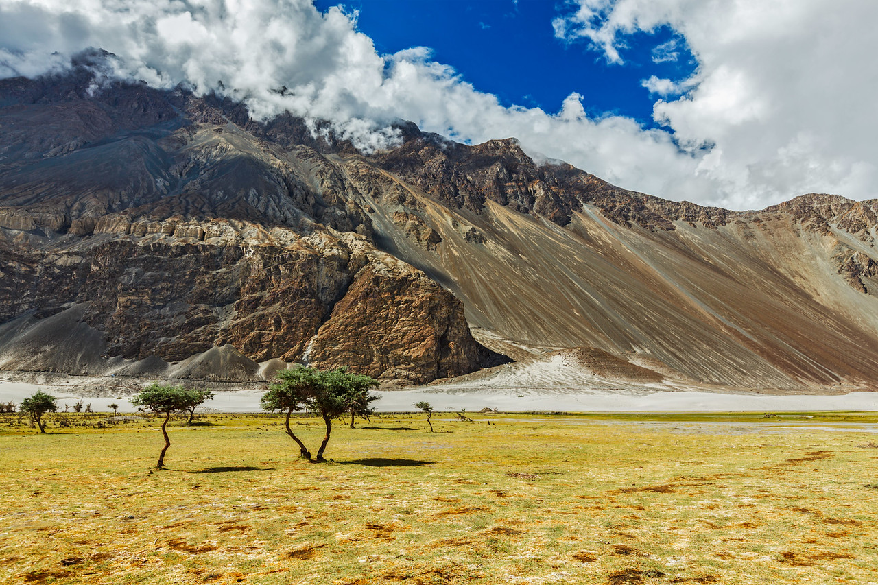 Himalayas and landscape of Nubra valley. Hunber, Nubra valley, Ladakh, India