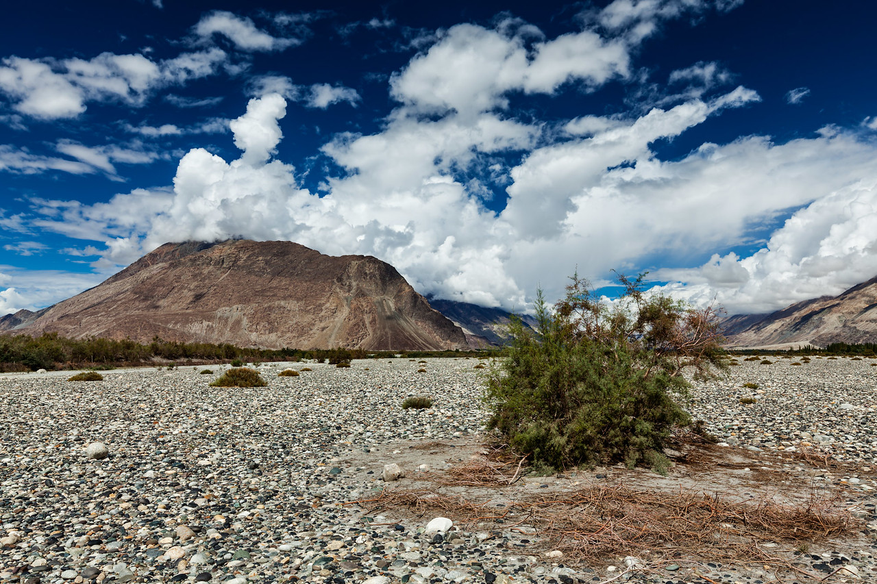 Landscape of Nubra valley in Himalayas. Ladakh, India