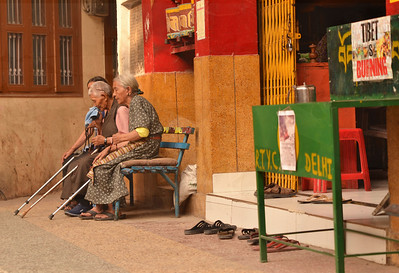 sit, pray, chat in the Tibetan colony