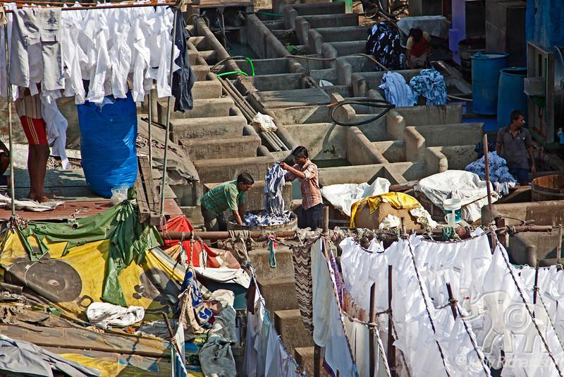 Men working at Dhobi Ghat in the open air laundromat in Mumbai, India.