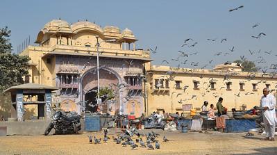 JAipur, India 2012