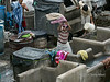 Man pounding laundry at the Dhobi ghat, Mumbai, India<br /> <br /> This shot shows a man pounding an item he is washing on the edge of the concrete water-filled tubs that the clothes are washed in.