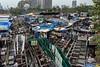 Colourful chaos at the Dhobi Ghat, Mumbai, India