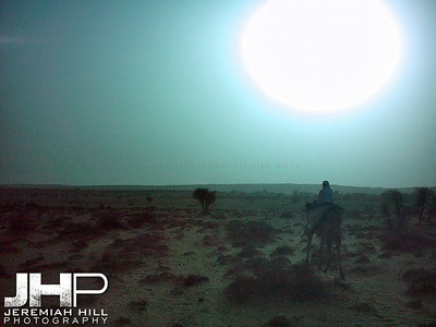 """""""Morning Rise"""", Thar Desert, Rajasthan, India, 2005 Print INDIA9B-49V2"""