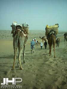 """""""Safari #1"""", Thar Desert, Jaisalmer, Rajasthan, India, 2005 Print INDIA9_B-86V2"""