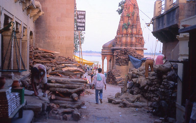 Behind the main burning ghat in Varanasi