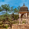 Chattri in Ranthambore National Park