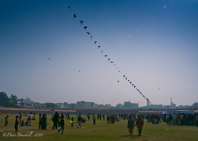 Jaipur Kite Festival in Rajasthan, India