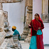 Rajasthan : 3 galleries with 52 photos