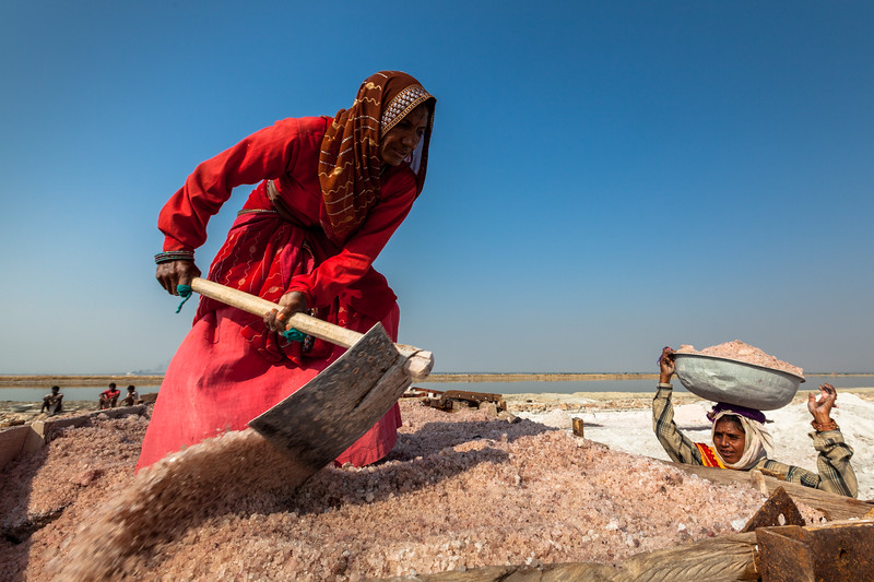 Women mining salt at lake Sambhar, Rajasthan, India