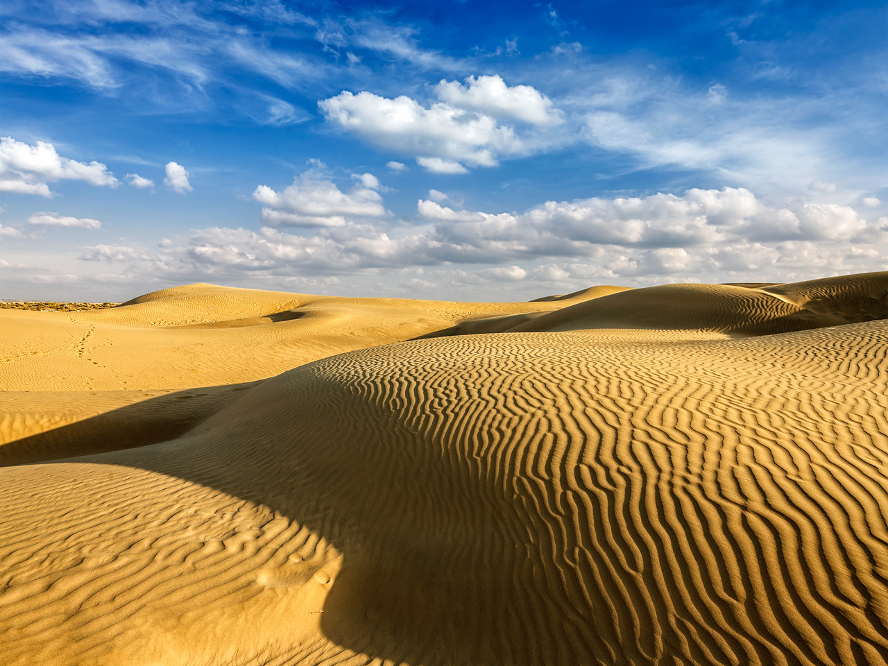 Sam Sand dunes in Thar Desert. Rajasthan, India