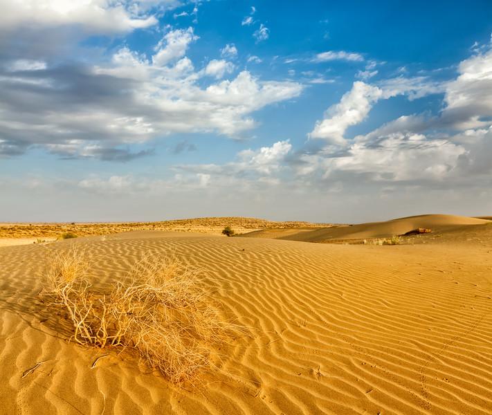 Dunes of Thar Desert, Rajasthan, India