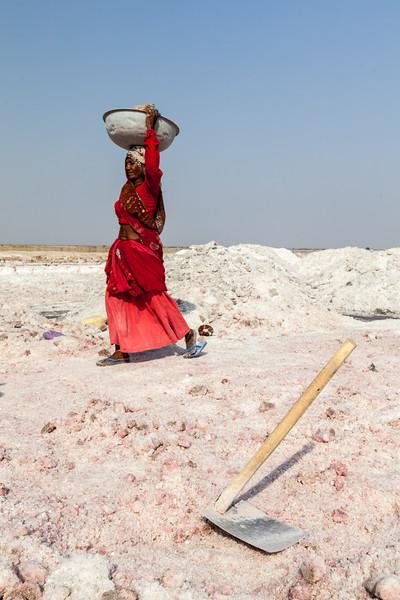 Woman mining salt at lake Sambhar, Rajasthan, India