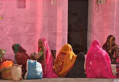 Pushkar pink