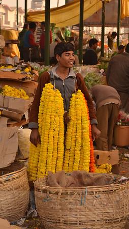 marigold flow