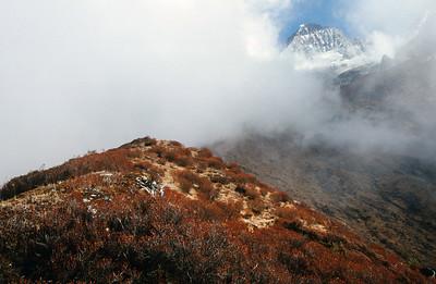 Yuksom - Dzongri - Gochala trek