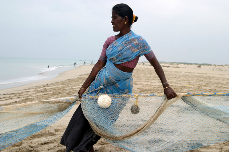 Dhanushkodi fisherman drawing in the fish nets from the Guld of Mannar.