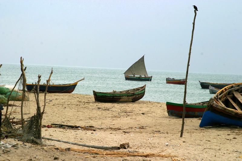 , Dhanushkodi fisherman