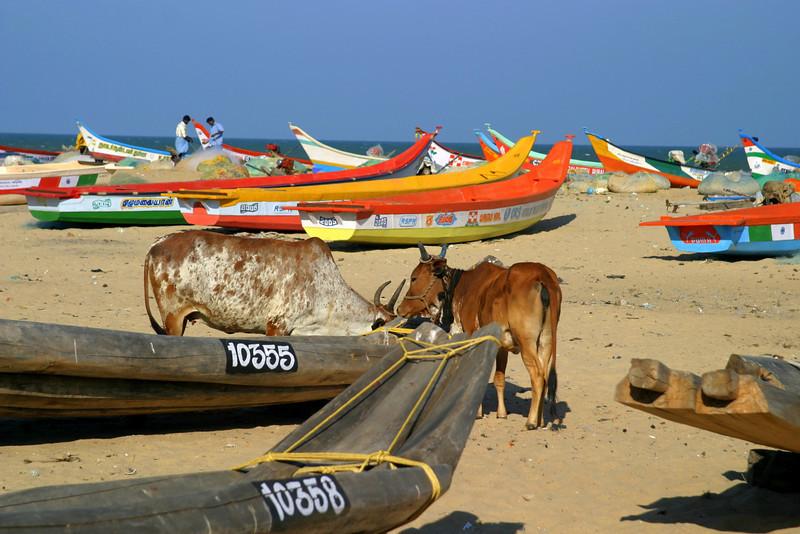 The beach by the shore temple in Mamallapuram