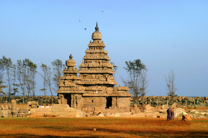 Built in the 8th century AD, the shore temple in Mamallapuram is one of the oldest temples is South India. - This magnificent temple was recently included in the world heritage monuments. A huge wall has been built on one side to prevent it from further erosion since some carvings have almost disappeared. The shore temple is dedicated to Lord Vishnu and Lord Shiva. But the carvings inside the temple remain intact. The temple looks particularly beautiful in the night when lit.