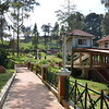 Honeymoon Boat House, Ooty : Honeymoon Boat house in Ooty opened during the year 2004. situated at the other end of the lake (west from main boat house). A pleasant atmosphere very much apt for newly wed couples to enjoy their honeymoon. This Boat house includes a special Kashmiri shikara Boat ride. This is the second boathouse at Ooty, a relatively smaller and less crowded - most of all cleaner boat house and lake section. There is a paved walk way around the lake, which is very serene and beautiful. You must not forget to Take a walk on the pathway by the lake. Its really Very scenic and calming.