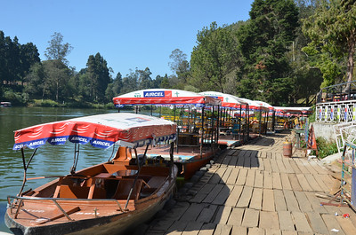 Ooty Lake and Ooty Boat House, Udhagamandalam